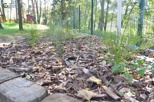 Eco lokalnie 2_Gora Włodowska_03_Centrum Rozwoju Lokalnego-min