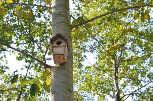 Eco lokalnie 2_Gora Włodowska_08_Centrum Rozwoju Lokalnego-min